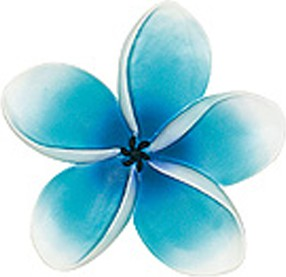 Декор для ванной синий, 2шт Spirella EXOTIC 1004318