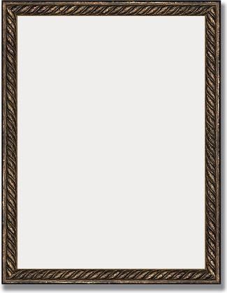 Зеркало 35x45см в багетной раме витая бронза Evoform BY 1339