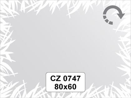 Зеркало для ванной с орнаментом 80x60см FBS CZ 0747