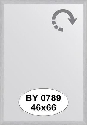 Зеркало 46x66см в багетной раме сталь Evoform BY 0789
