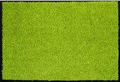 Коврик придверный 60х90см, салатовый Golze Proper Tex Uni 618-55-30