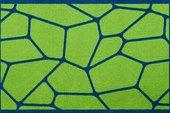 Коврик придверный 50x78см для помещения зелёная паутина, полиамид Golze CONTZEN MATS MICRO 1700-40-006-030