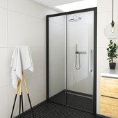 Душевая дверь Roltechnik Exclusive ECD2P, 120см, правая, прозрачное стекло, чёрный 565-120000P-05-02