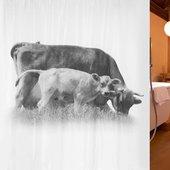 Штора для ванной Spirella Calfy, 180x200см, текстиль, белый 1017897