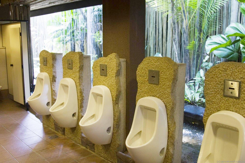 Туалет с видом на парк в Сингапуре